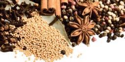 Декор Lasselsberger Spices 2 19,8х39,8