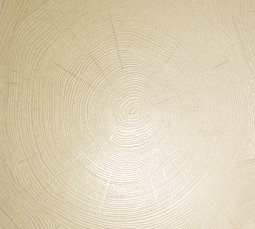 Плитка для пола Сокол Сибирь Текстура SBR5 бежевая полуматовая 44х44