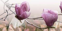Декор Береза-керамика Фрезия Магнолия 1 розовый 25х50