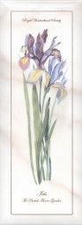 Декор Kerama Marazzi Ноттингем Цветы NT\A84\15005 15х40