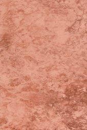 Плитка для стен Шаxтинская Плитка Флорентино Бордо Спутник 02 20x30