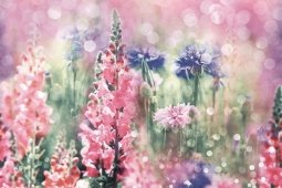 Панно Дельта Керамика Wildflowers 60x40