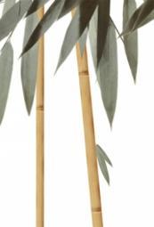 Вставка Уралкерамика Бамбук ВС7БМ024 24,9x36,4