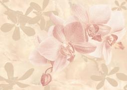 Декор Cersanit Gentle C-GT2M011 Розовый 25X35