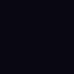 Линолеум Спортивный Tarkett Omnisports R65 Black 2 м рулон