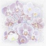 Панно AltaCera Orchids S/2 SW9ORH02 49,8x50